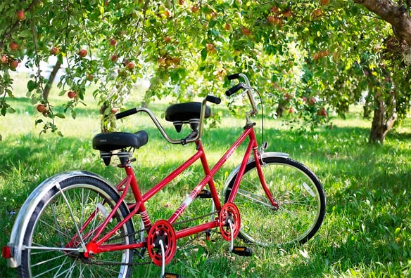 bicicleta dos plazas tándem